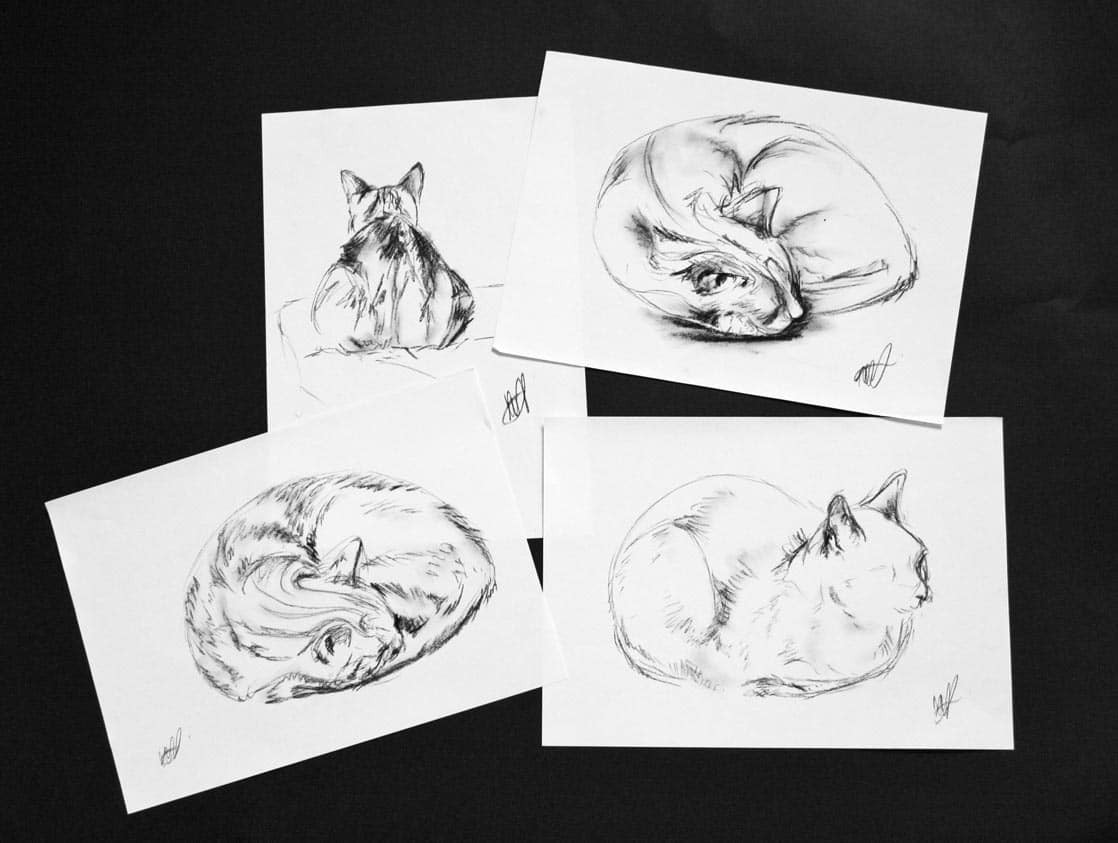 Charcoal Sketch of Cats