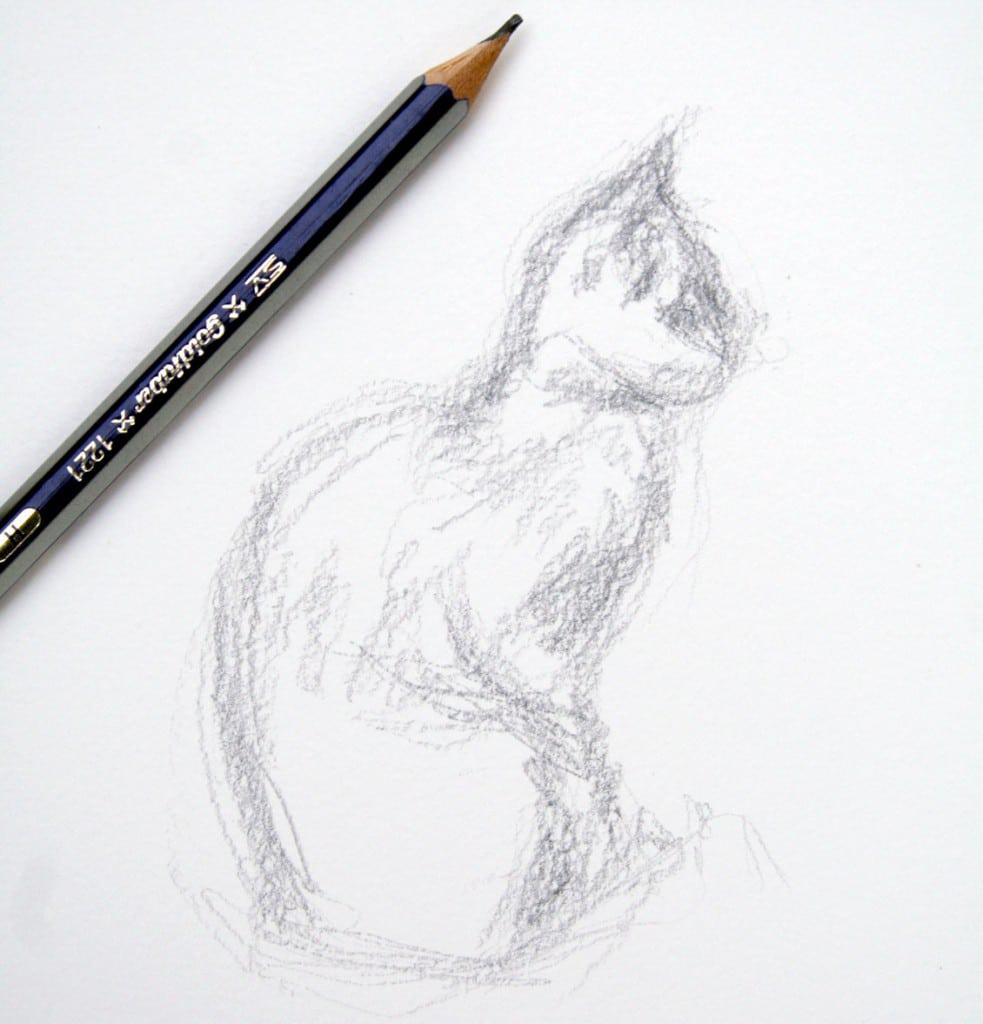 gesture-sketch-of-daisy-the-kitten