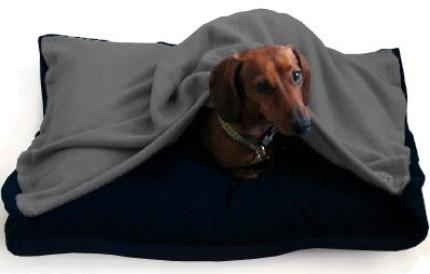 pet-blanket-bed